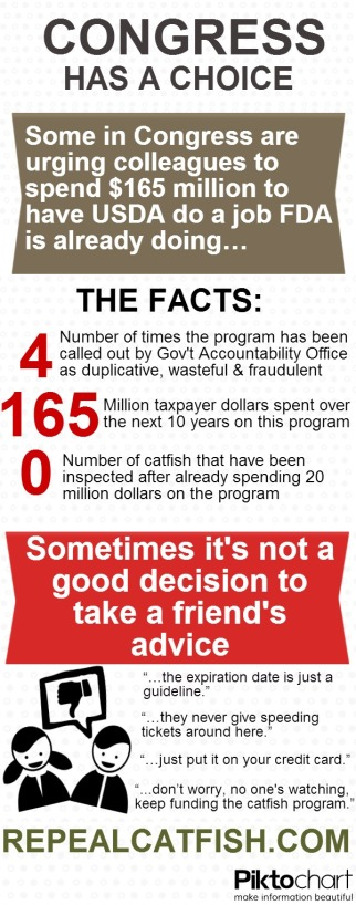 catfish_infographic5