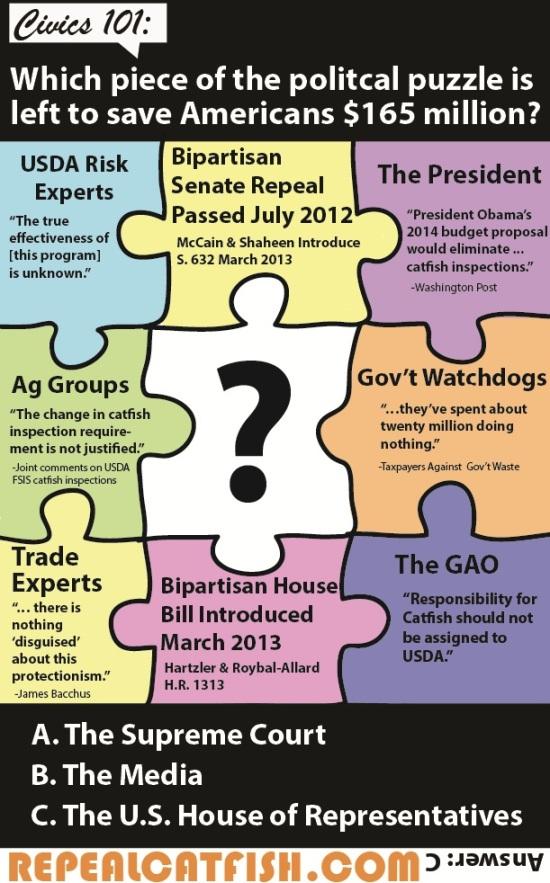 CatfishPuzzle_infographic