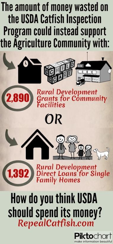rural_delv_infographic