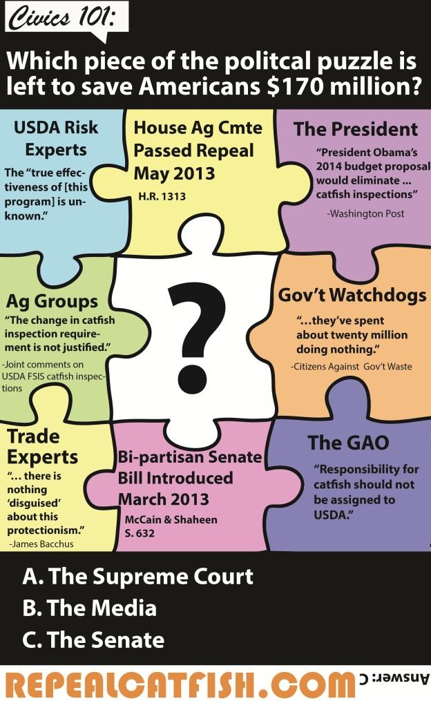 Puzzle_infographic_Senate